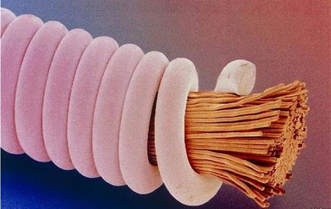 Guitar string under microscope