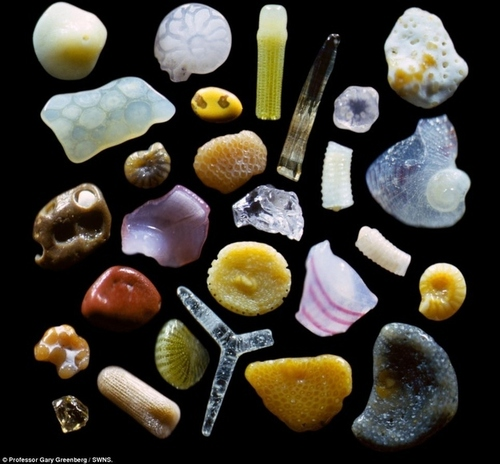 Sand under a microscope.